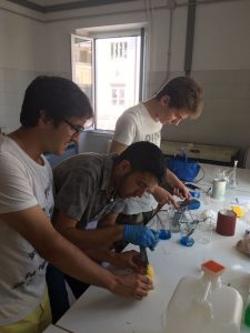 LABORATORIO CAMPUS (2)